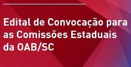Edital Convocação Comissões Imagem