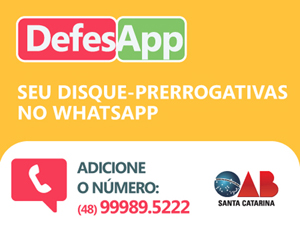 revista-DefesApp.jpg